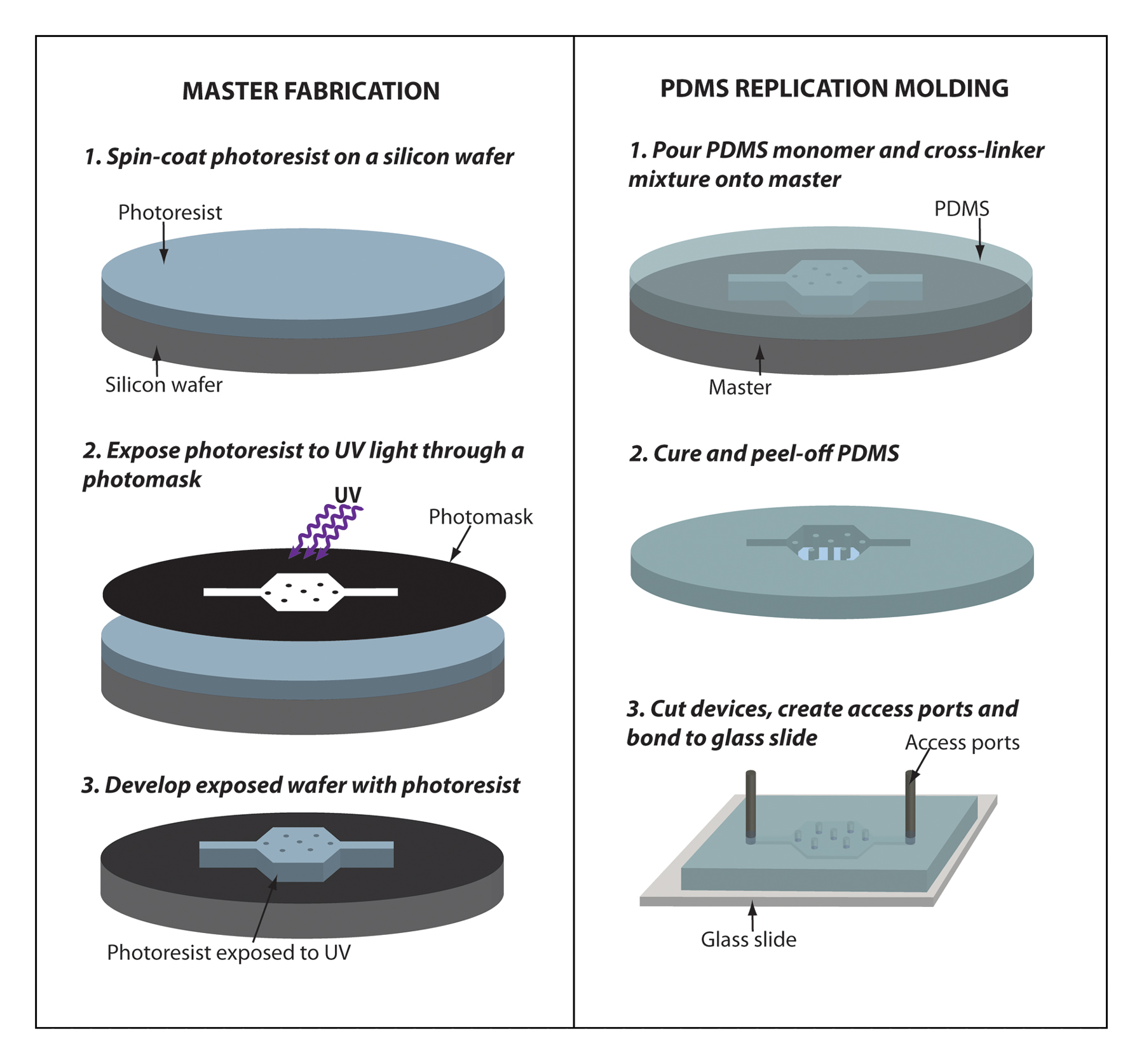 Microfluidics As A Tool For C Elegans Research Telephone Wiring Moreover Work Punch Down Extension Figure 7